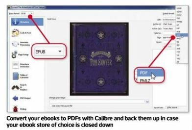 Convert your ebooks to PDFs with Calibre and back them up in case your ebook store of choice is dosed down