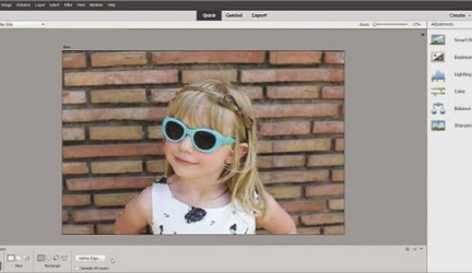Adobe Photoshop Elements 2019 Review: Mixed picture