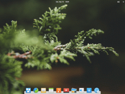 Elementary OS 0.4 review