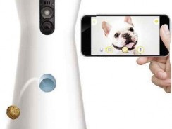 Furbo Dog Camera Review: Your robot dog-sitter