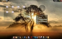 Bluestar Linux Review